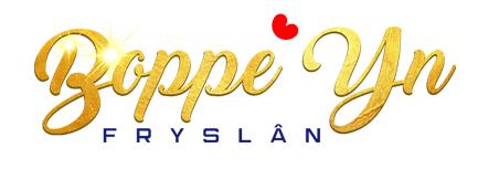 Boppe Yn